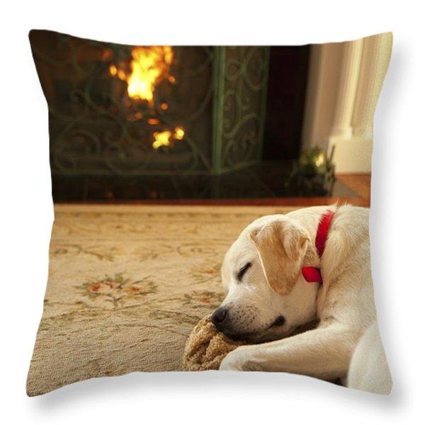 Sleepy Puppy Throw Pillow by Diane Diederich