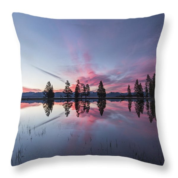 Slide into the Day Throw Pillow by Jon Glaser