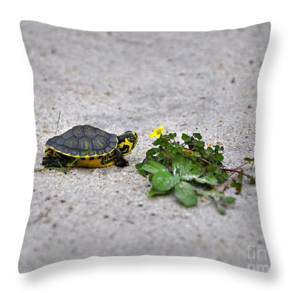 Slider And Sorrel In Sand Throw Pillow by Al Powell Photography USA