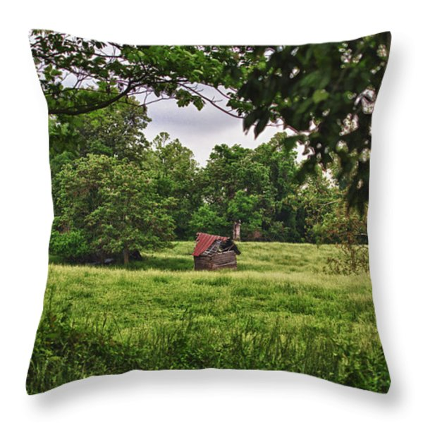 Slipping Away Throw Pillow by Cris Hayes