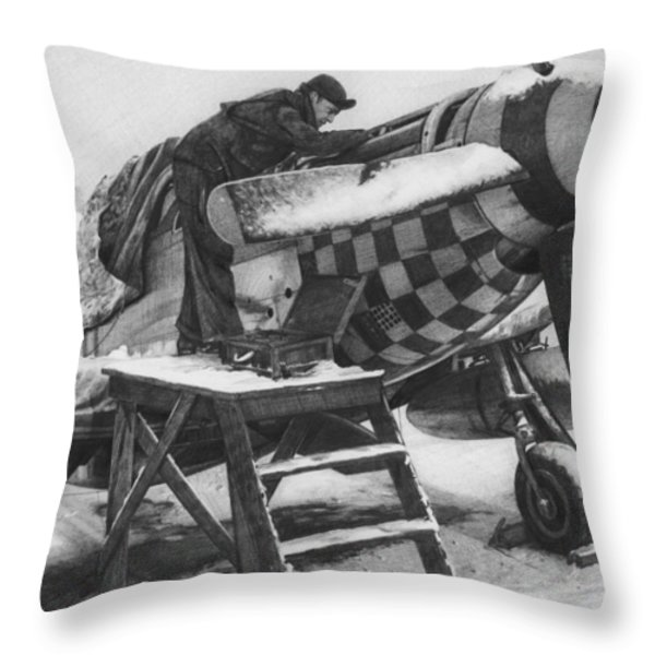 Slybird Winter Throw Pillow by Wade Meyers