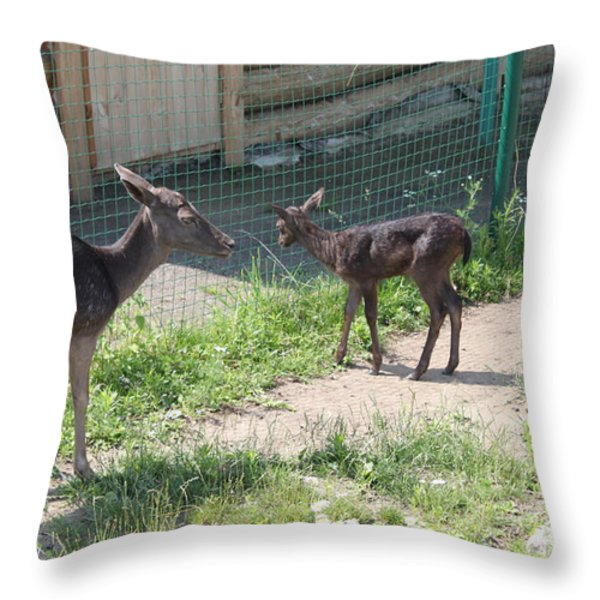 Small Deer Throw Pillow by Evgeny Pisarev