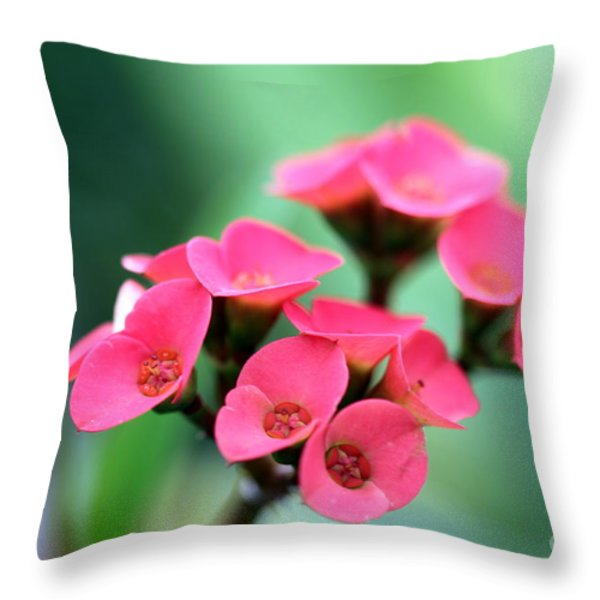 Small Red Flower Throw Pillow by Henrik Lehnerer