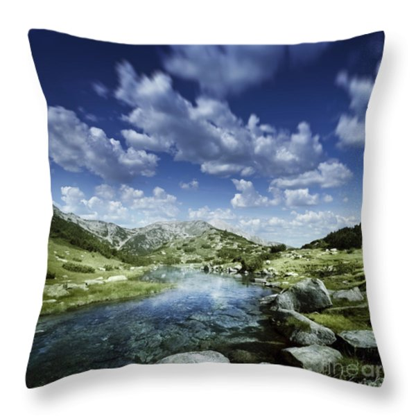 Small Stream In The Mountains Of Pirin Throw Pillow by Evgeny Kuklev