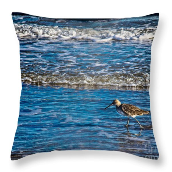 Small Waves Throw Pillow by Perry Webster