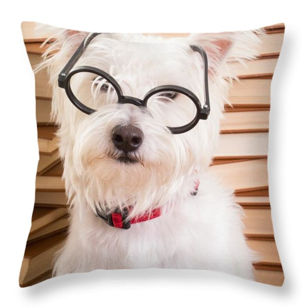 Smart Doggie Throw Pillow by Edward Fielding