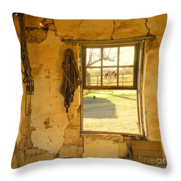 Smell Of Hay Throw Pillow by Joe Jake Pratt