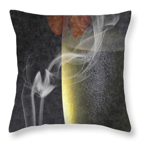 Smokey  Throw Pillow by Brian Roscorla