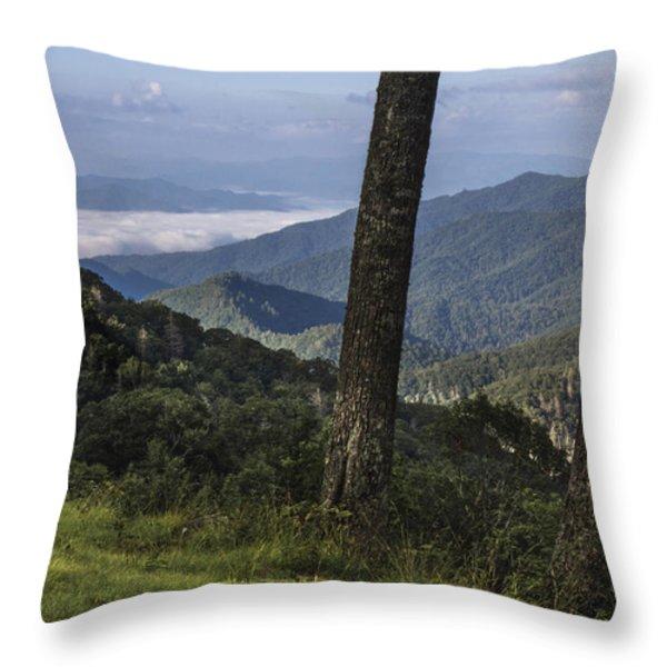 Smokey Mountain View Throw Pillow by John McGraw