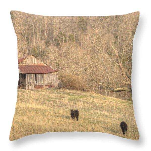 Smoky Mountain Barn 8 Throw Pillow by Douglas Barnett