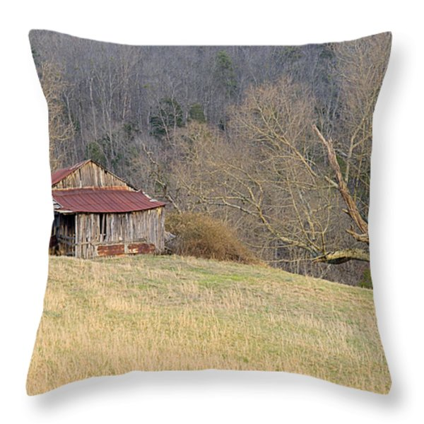 Smoky Mountain Barn 9 Throw Pillow by Douglas Barnett
