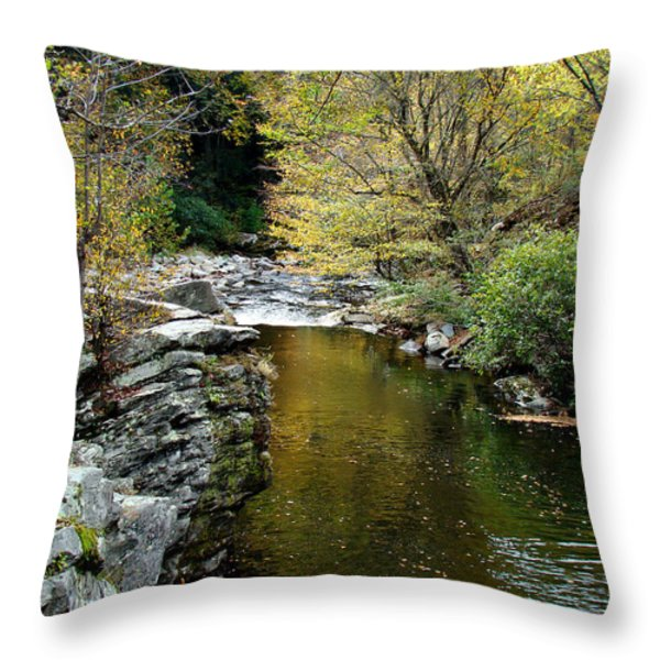 Smoky Mountian River Throw Pillow by Sandy Keeton