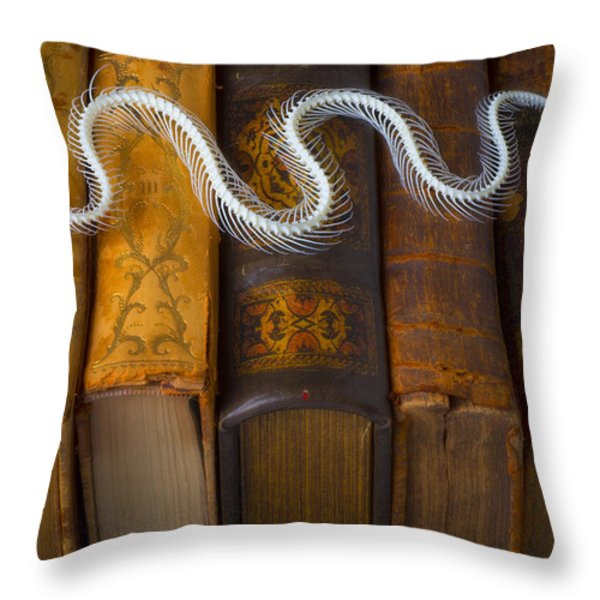 Snake And Antique Books Throw Pillow by Garry Gay