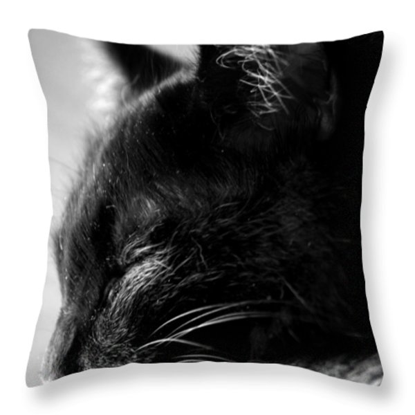 Snooze Throw Pillow by Camille Lopez