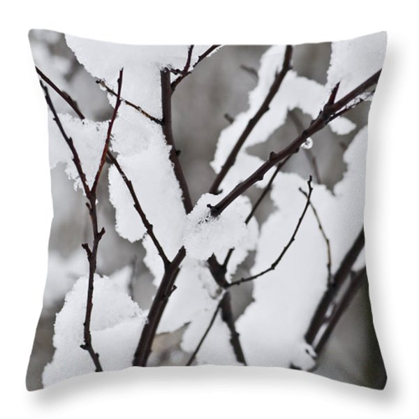 Snow covered branches Throw Pillow by Elena Elisseeva