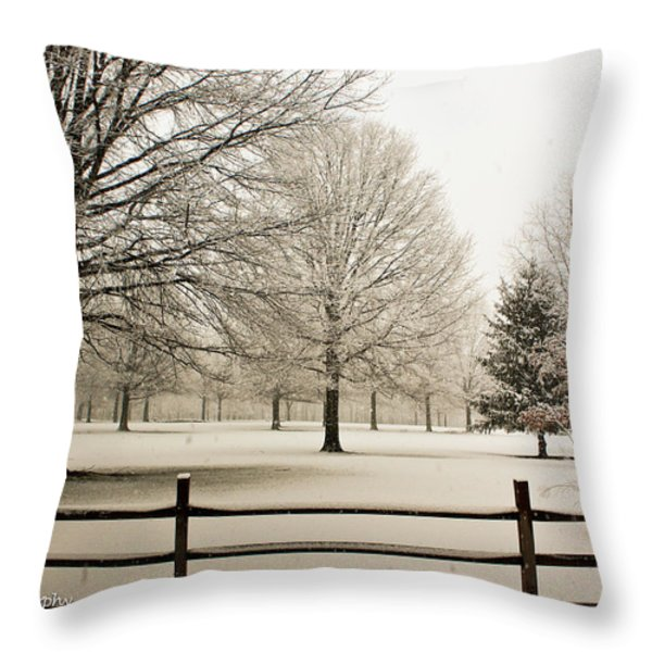 Snow-covered Landscape Throw Pillow by Ann  Murphy