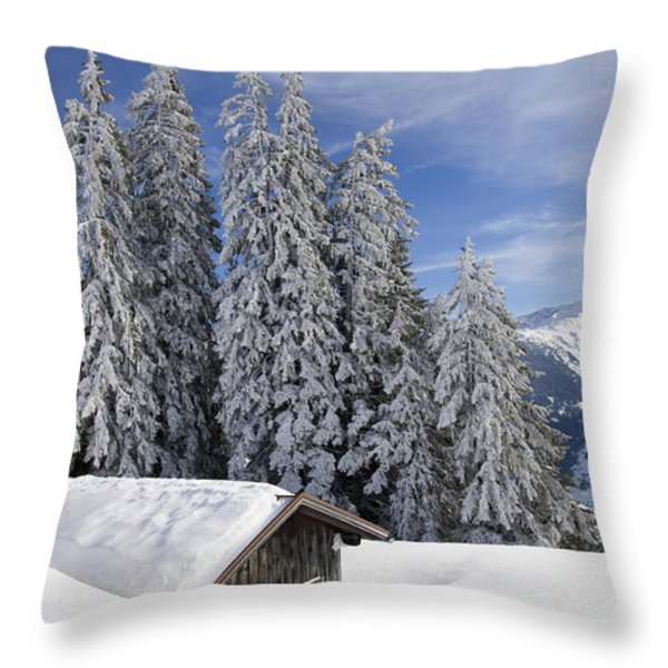 Snow covered trees and mountains in beautiful winter landscape Throw Pillow by Matthias Hauser