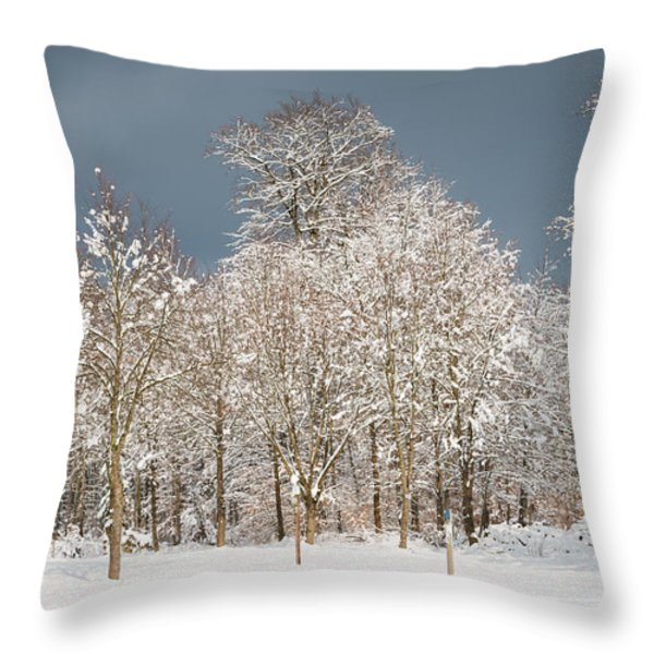 Snow covered trees in the forest in winter Throw Pillow by Matthias Hauser