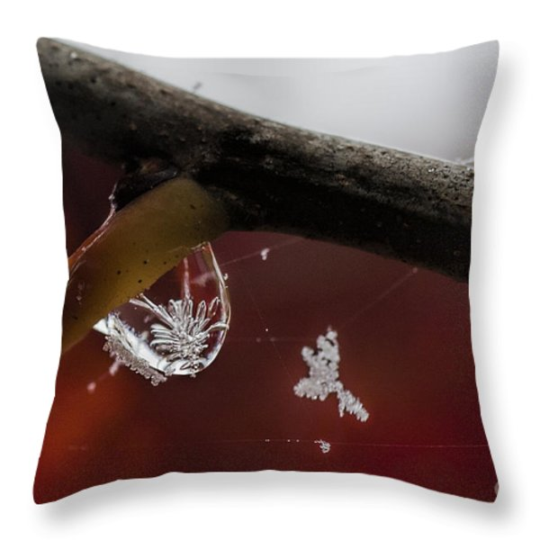 Snow Crystal In Water Drop Throw Pillow by Dan Friend