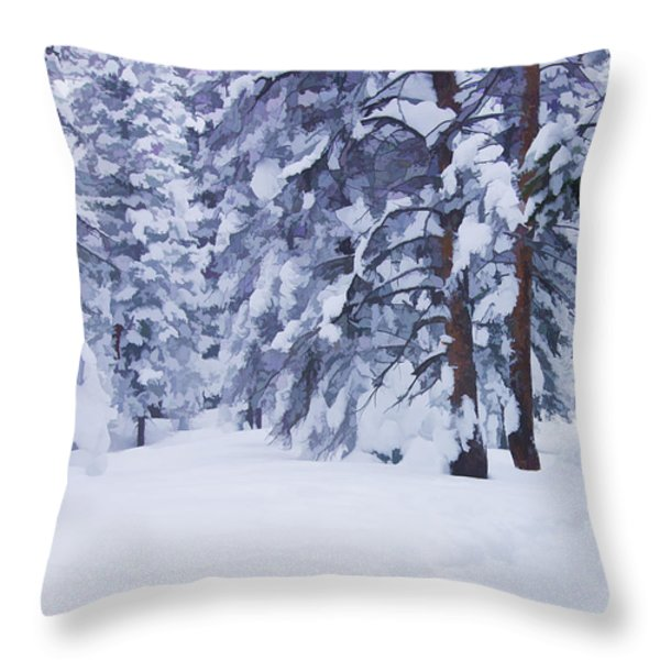 Snow-dappled Woods Throw Pillow by Don Schwartz