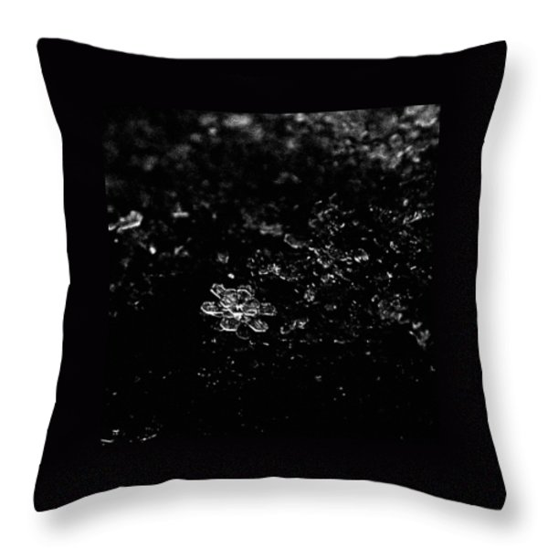 Snow Flower Throw Pillow by Rona Black