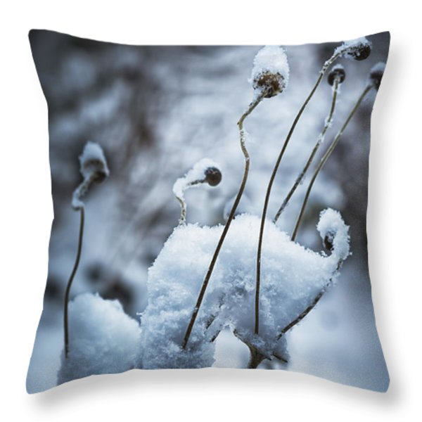 Snow Forms Throw Pillow by Belinda Greb
