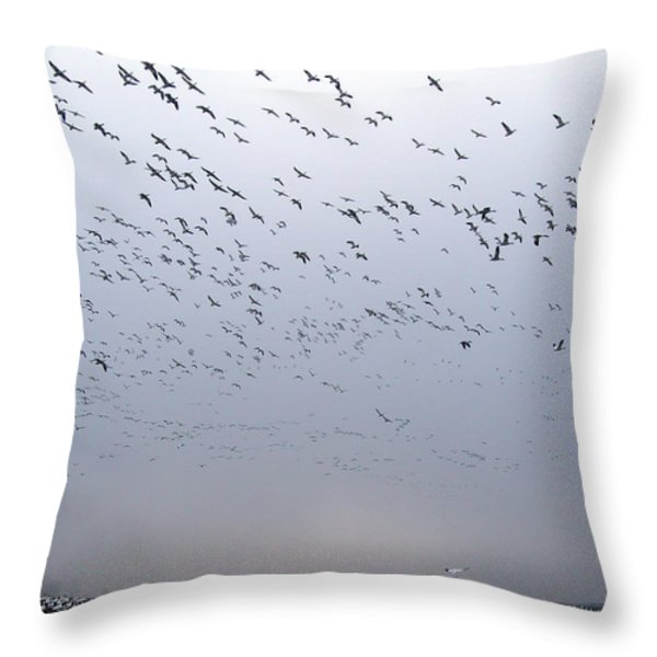 SNOW GEESE  Throw Pillow by Skip Willits
