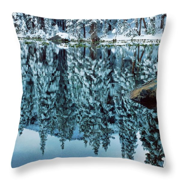 Snow Mirror Throw Pillow by Eric Glaser