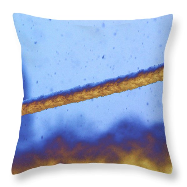 Snow On Line Throw Pillow by Carol Lynch