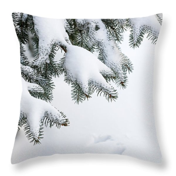 Snow On Winter Branches Throw Pillow by Elena Elisseeva