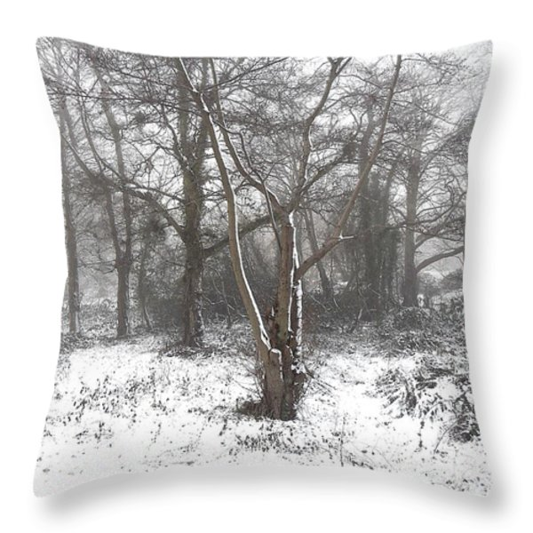 SNOW SCENE 7 Throw Pillow by Patrick J Murphy