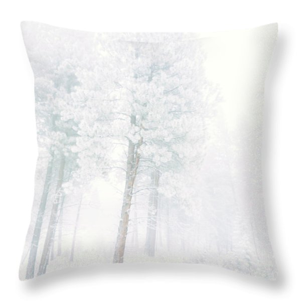 Snowed In Throw Pillow by Tara Turner