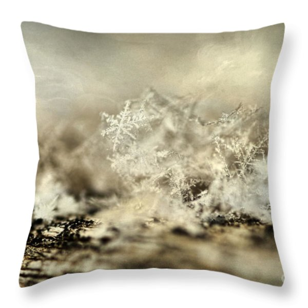 Snowflakes Throw Pillow by Darren Fisher