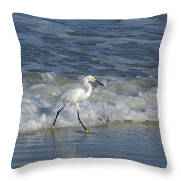 Snowy At The Beach Throw Pillow by Patricia Twardzik