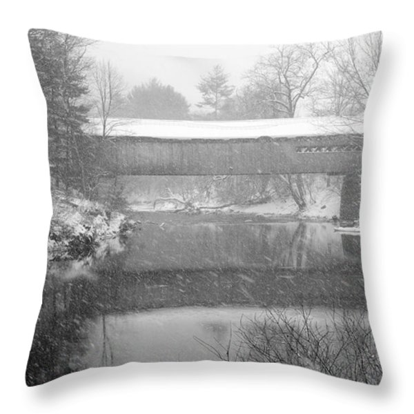 Snowy Crossing Throw Pillow by Luke Moore