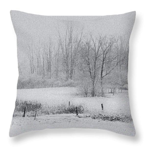 Snowy Fields Throw Pillow by Michele Steffey