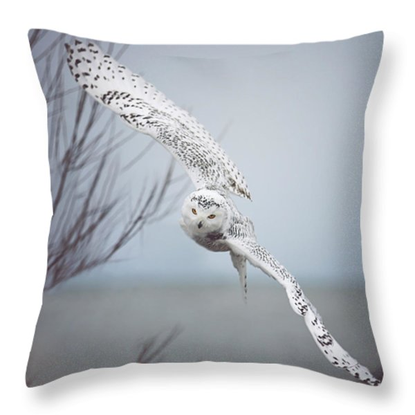 Snowy Owl In Flight Throw Pillow by Carrie Ann Grippo-Pike