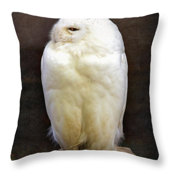 Snowy owl vintage  Throw Pillow by Jane Rix