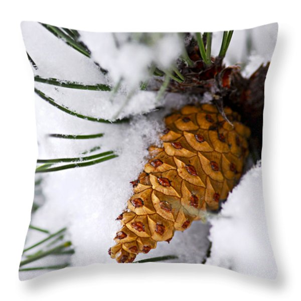 Snowy pine cone Throw Pillow by Elena Elisseeva