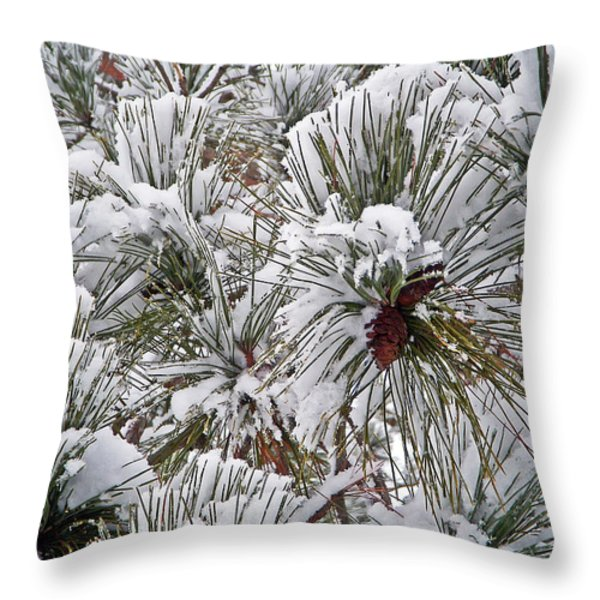 Snowy Pine Needles Throw Pillow by Aimee L Maher Photography and Art
