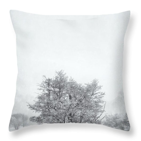 Snowy Tree Throw Pillow by Scott Norris