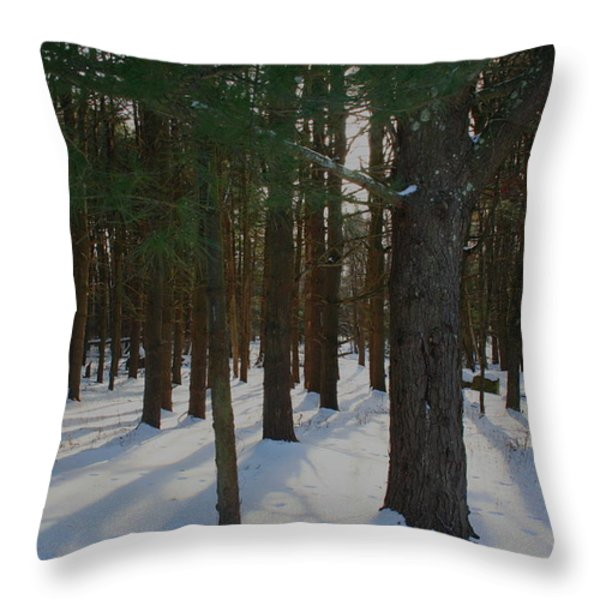 Snowy Trees Throw Pillow by Stephen Melcher