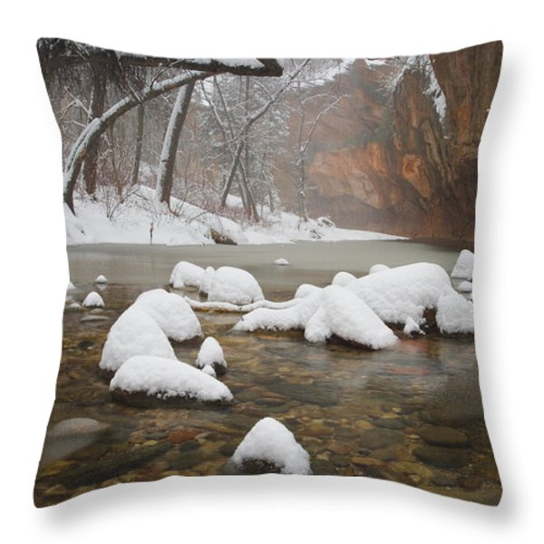 Snowy West Fork Throw Pillow by Peter Coskun