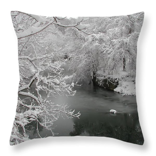 Snowy Wissahickon Creek Throw Pillow by Bill Cannon