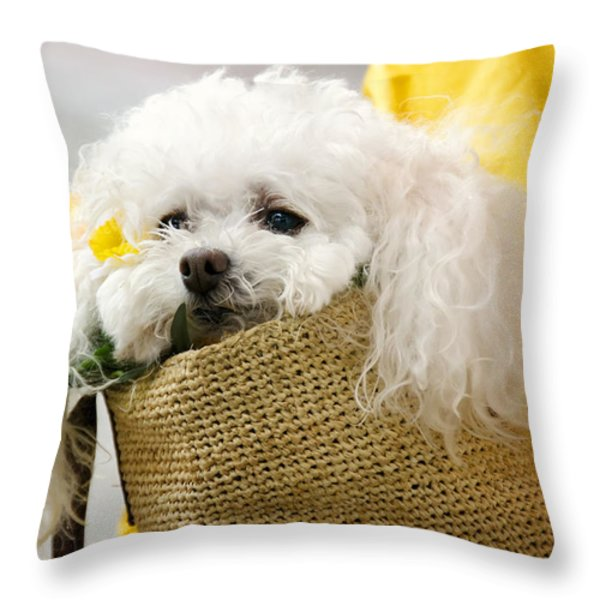 Snuggled Poodle Dog Throw Pillow by Donna Doherty