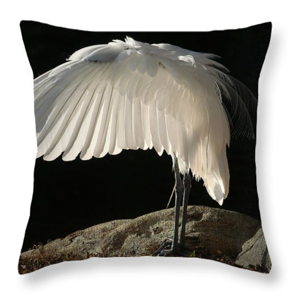 So Shy Throw Pillow by HH Photography