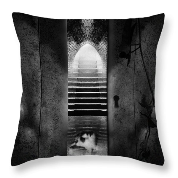 Soft Asylum Throw Pillow by Bob Orsillo