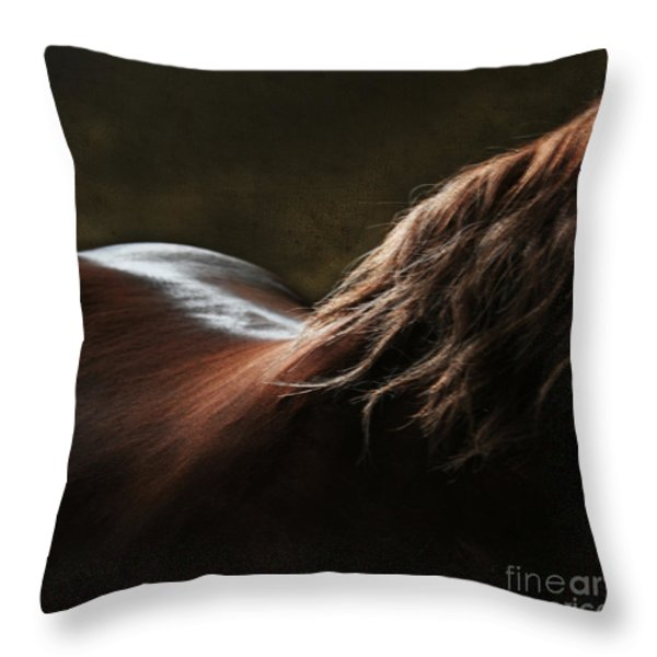 Soft Shapes Throw Pillow by Angel  Tarantella