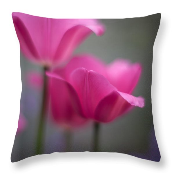 Soft Tulip Twilight Throw Pillow by Mike Reid