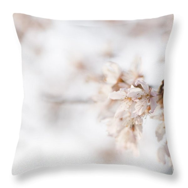 Softly Blossom Throw Pillow by Anne Gilbert